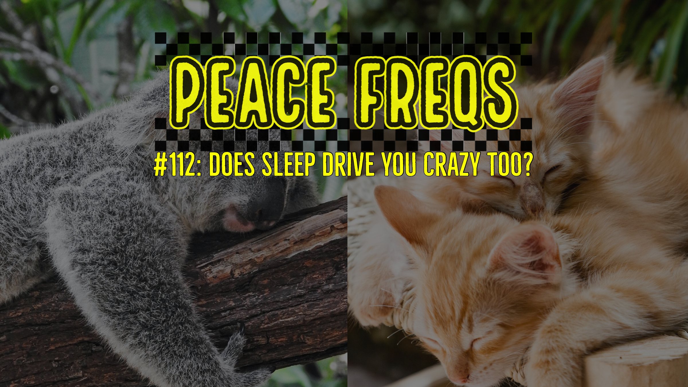 Peace Freqs: Episode 112: Does Sleep Drive You Crazy Too?