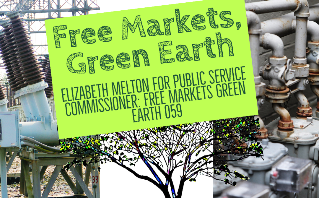 Elizabeth Melton For Public Service Commissioner: Free Markets Green Earth 059