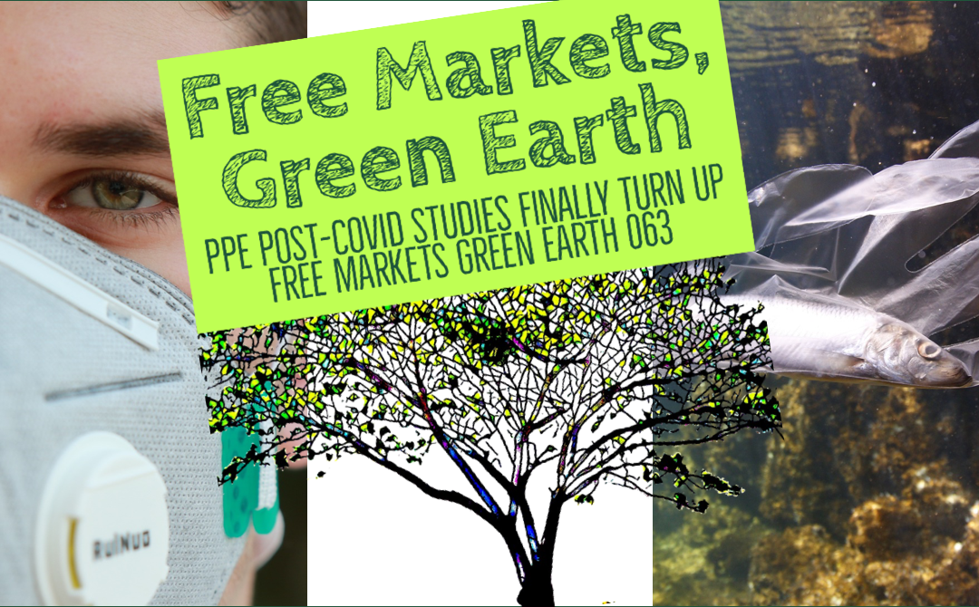 PPE Post-Covid Studies Finally Turn Up – Free Markets Green Earth 063